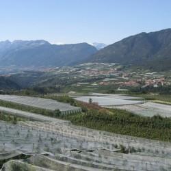 Rennradführer-Südtirol / Meranerland