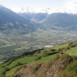 Rennradführer Südtirol / Vinschgau