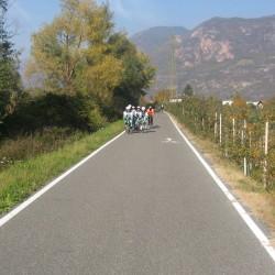 Rennradführer Südtirol: Fennberg / Grupetto