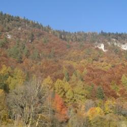 Rennradführer Südtirol: Fennberg / Herbstfarben