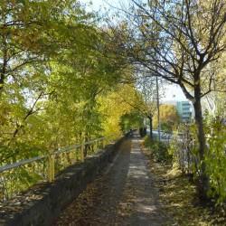 Etsch Radweg im Herbst