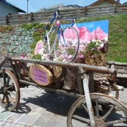 Rennradführer Trentino Nord / Vigo di Fassa
