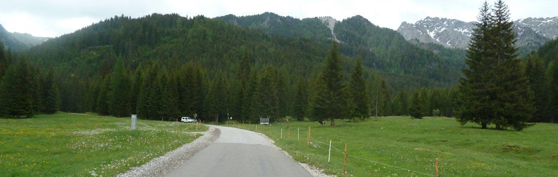 Rennradführer Trentino Nord / Val San Nicolo /