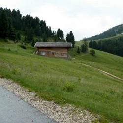 Auffahrt zum Reiterjoch (Passo Pampeago)