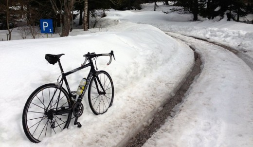 Schnee am Monte Penegal / Trentino