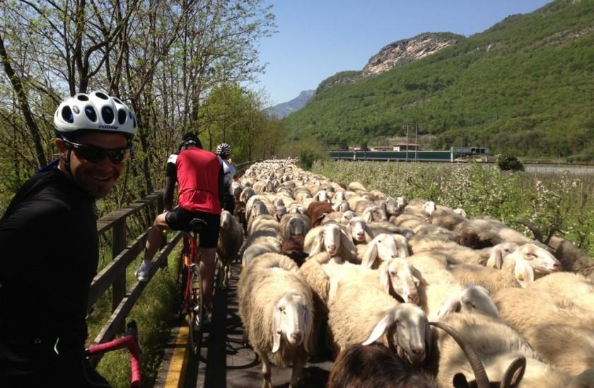 Rennradtour Bozen - Garda