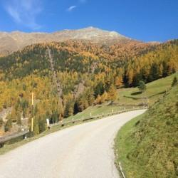 Rennradtour Vinschgau / Herbst
