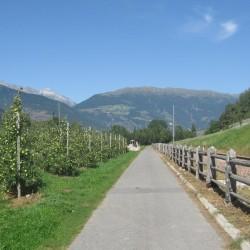 Rennradführer Südtirol / Radweg