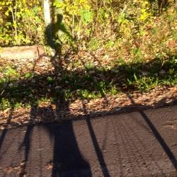 Rennradtour Meranerland / Schatten