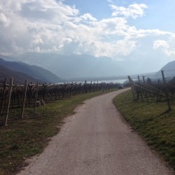 Rennradtour Südtiroler Unterland