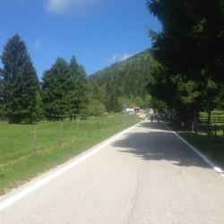 Monte Grappa / Malga