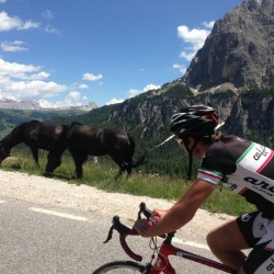 Sellaronda Bikeday 2014 / Ross & Reiter