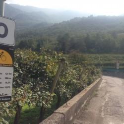 Roveretorunde: Start Bergrennen