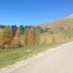 Reiterjoch: Herbst