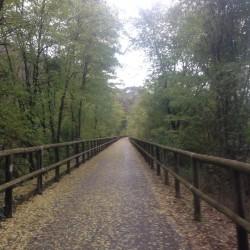 Rennradtour Gfrill: Radweg bei Bozen