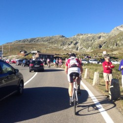 Alpenbrevet Platin / Finale Grimselpass