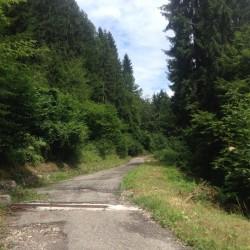Rennradtour Monte Zoncolan / Alte Strasse von Priola