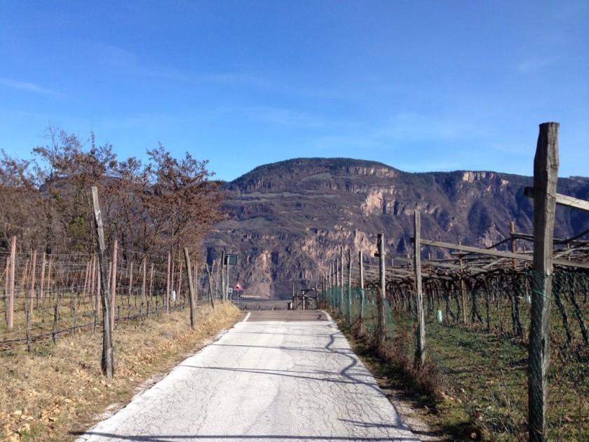 Rennradtour Südtirols Süden / Kojotenpass