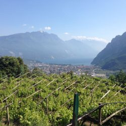 Rennradtour Gardasee / Riva