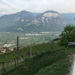 Steile Rennradrunde Südtiroler Unterland: Etschtal