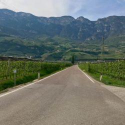 Steile Rennradrunde Südtiroler Unterland: Fennberg