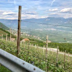 Steile Rennradrunde Südtiroler Unterland: Kurtatsch