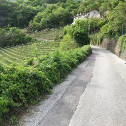 Steile Rennradrunde Südtiroler Unterland: Steilstück