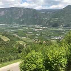 Rennradtour Meran / Aussicht Etschtal