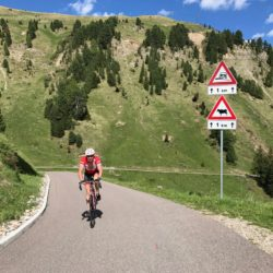 Rennradtour Karerpass - Reiterjoch / Gerry