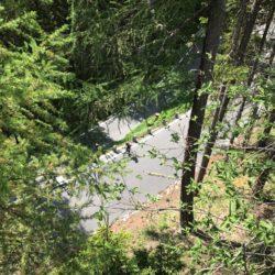 Rennradtour Passo Stelvio / Waldstück
